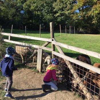 Eltern Klosterneuburg: Babysitter Job Michaela