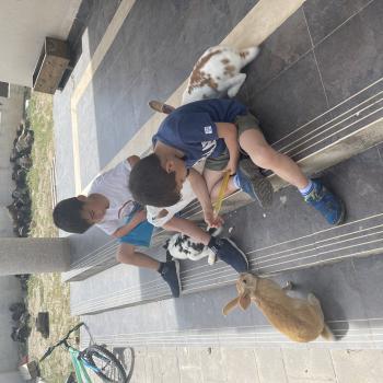 Trabajo de canguro en Dílar: trabajo de canguro Ana
