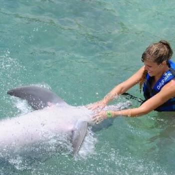 Trabajo de niñera Viña del Mar: trabajo de niñera Karen