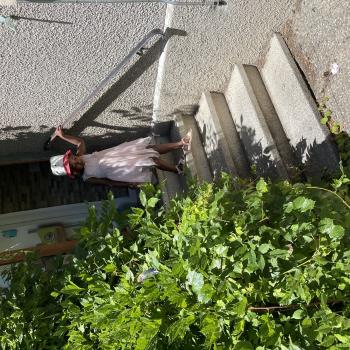 Job de garde d'enfants à Genève: job de garde d'enfants Af kafui