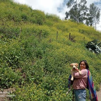 Niñera en Comas (Lima region): Adriana