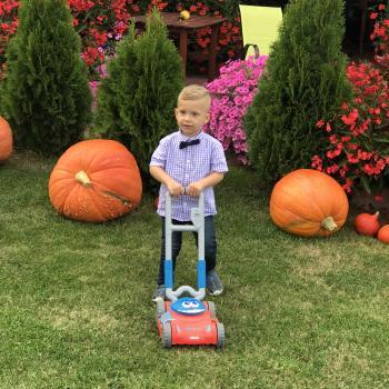 Babysitting job Waalwijk: babysitting job Walid