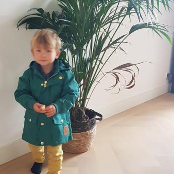 Oppaswerk Driehuis (Noord-Holland): oppasadres Alice