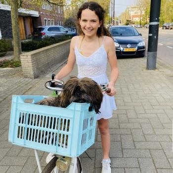 Babysitter in Rotterdam: Roos