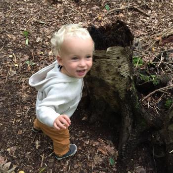 Ouder Alkmaar: oppasadres Wilma
