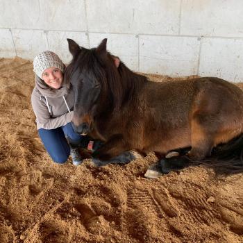Babysitter Sankt Johann in Tirol: Sonja