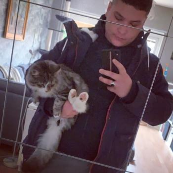Babysitter in Gävle: Mohammad