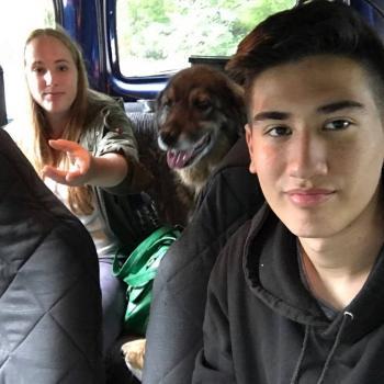 Babysit Leuven: Robbe