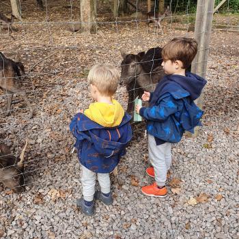 Baby-sitting Füllinsdorf: job de garde d'enfants Sabrina