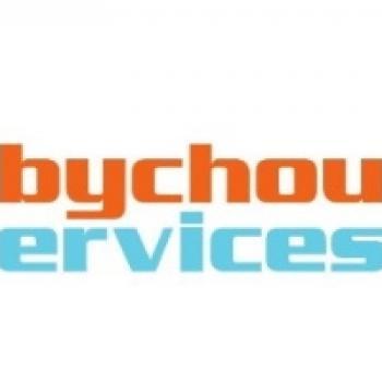 Agence de garde d'enfants à Nice: Babychou Services