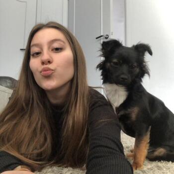 Babysitter Roeselare: Jessica