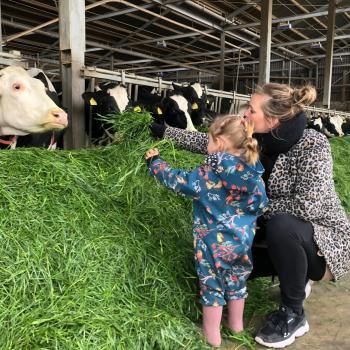 Babysitting job in Maarssen: babysitting job Marinka