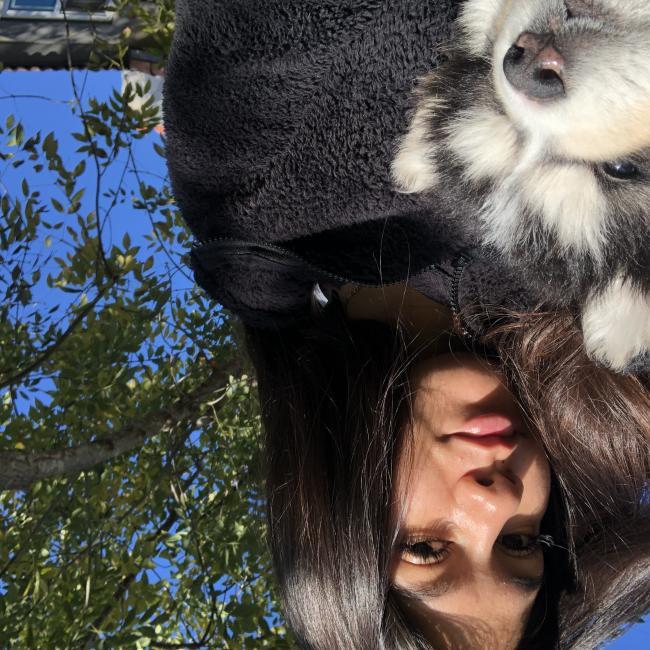 Babysitter in Spring Valley (California): Hide