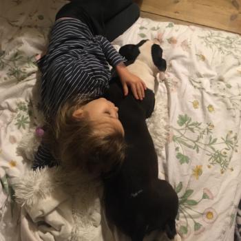 Praca opiekunka do dziecka Poznań: praca opiekunka do dziecka Iza